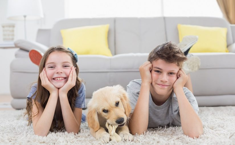 Предимствата и недостатъците в избора на килими за дома
